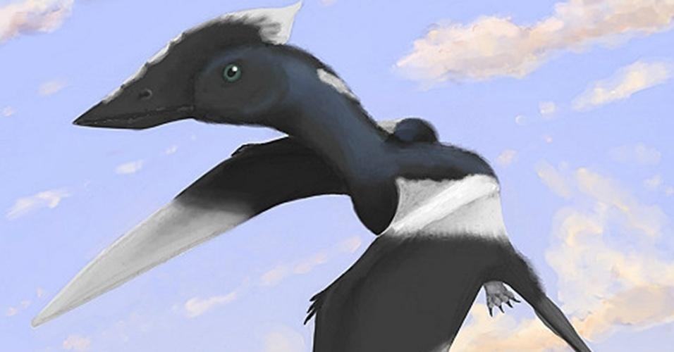 """20.mar.2013 - Uma espécie desconhecida de pterossauro foi batizada de """"Vectidraco daisymorrisae"""" em homenagem a uma menina. Aos cinco anos, Daisy Morris encontrou restos fossilizados do réptil voador na praia de Atherfield, que fica na Ilha de Wight, no Reino Unido - quatro anos depois, a descoberta foi comprovada por especialistas e publicada em revista científica"""