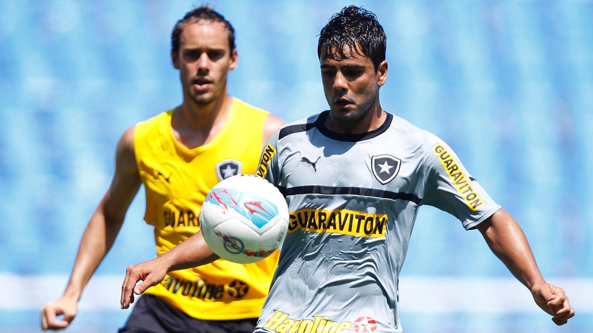 Henrique teve poucas oportunidades no Botafogo e amarga o banco de reservas