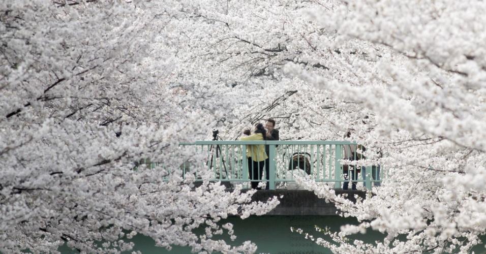 26.mar.2013 - Pessoas visitam parque de Tóquio, no Japão, durante a época das flores da cerejeira