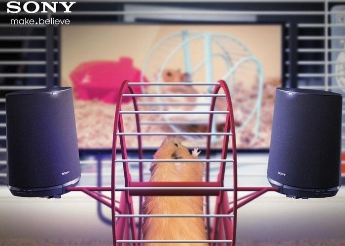 2013 - A Sony anunciou no Twitter (sua conta britânica) uma alto-falantes compatíveis com a gaiola do hamster. A falsa novidade faz parte da linha Animalia, com produtos tecnológicos para animais de estimação