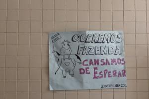 Cristiane Capuchinho/UOL