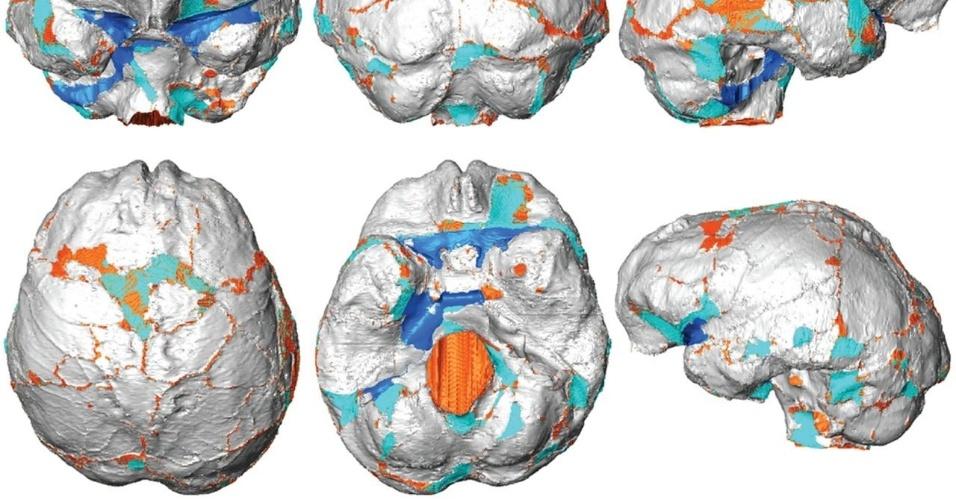 """17.abr.2013 - Cientistas japoneses fizeram um scanner completo e em 3D do crânio de um """"Homo floresiensis"""" (foto) para estudar sua evolução e descobriram que esse povo teria progressivamente encolhido através das gerações para adaptar suas necessidades a recursos pouco abundantes na ilha de Flores, na Indonésia. Com cerca de 1 metro de altura e 25 quilos, eles foram apelidados de """"hobbits"""" de Flores em alusão aos personagens da saga """"O Senhor dos Anéis"""", de J.R.R Tolkien"""