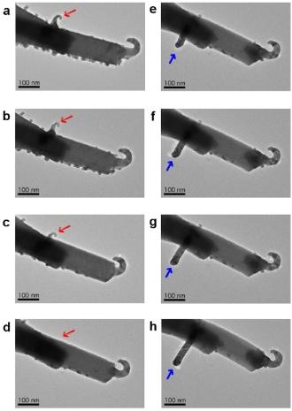 18.abr.2013 - Imagens microscópicas mostram o crescimento dos filamentos de prata (setas azuis) na superfície de cristais de tungstato, um composto formado por óxido de prata e tungstênio