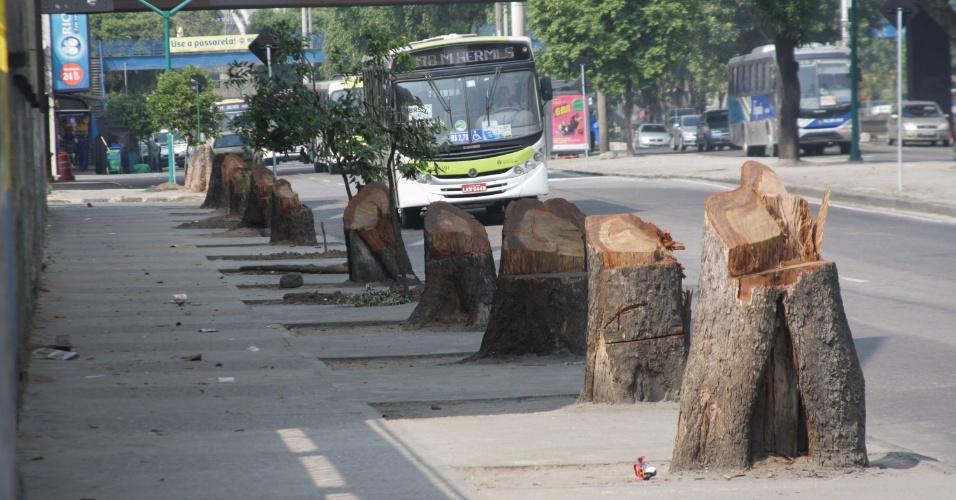 19.abr.2013 - Diversas árvores adultas foram cortadas na avenida Francisco Bicalho, próximo a obras no entorno da Rodoviária Novo Rio, na região central do Rio de Janeiro. Em outros pontos da cidade, moradores estão denunciando podas ilegais, inclusive dentro de condomínios de luxo