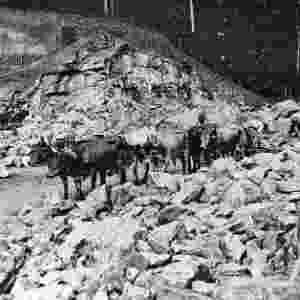 Animais e carroças fazem o transporte de minério nas primeiras operações da Vale, em Itabira (MG) - Vale
