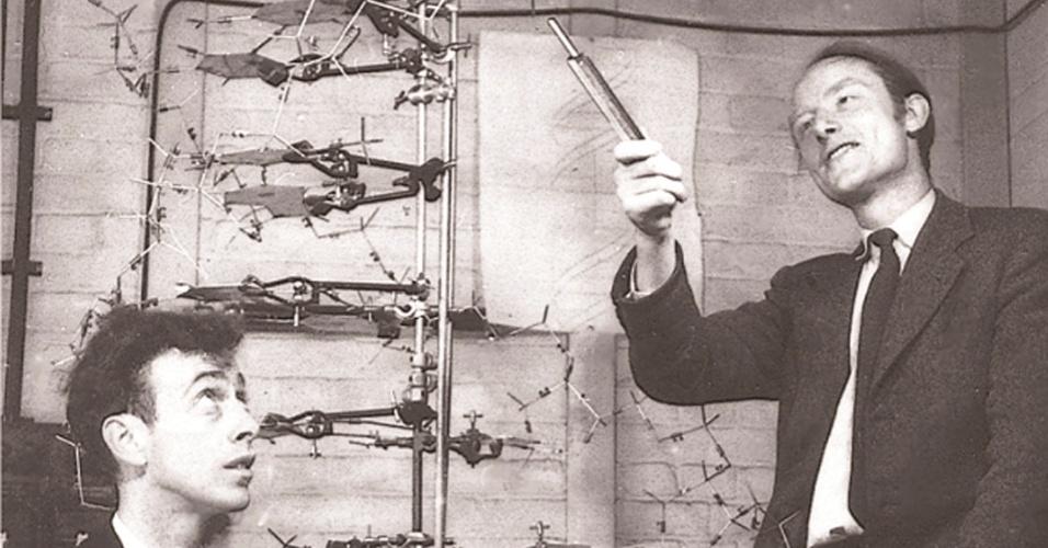 """25.abr.2013 - Os cientistas Francis Crick (em pé) e James Watson são fotografados no laboratório Cavendish, da Universidade de Cambridge, em 1953, mesmo ano em que eles descreveram, pela primeira vez, a estrutura do DNA no artigo """"Estrutura do ácido desoxirribonucleico"""", publicado pela revista Nature há 60 anos, no dia 25 de abril"""