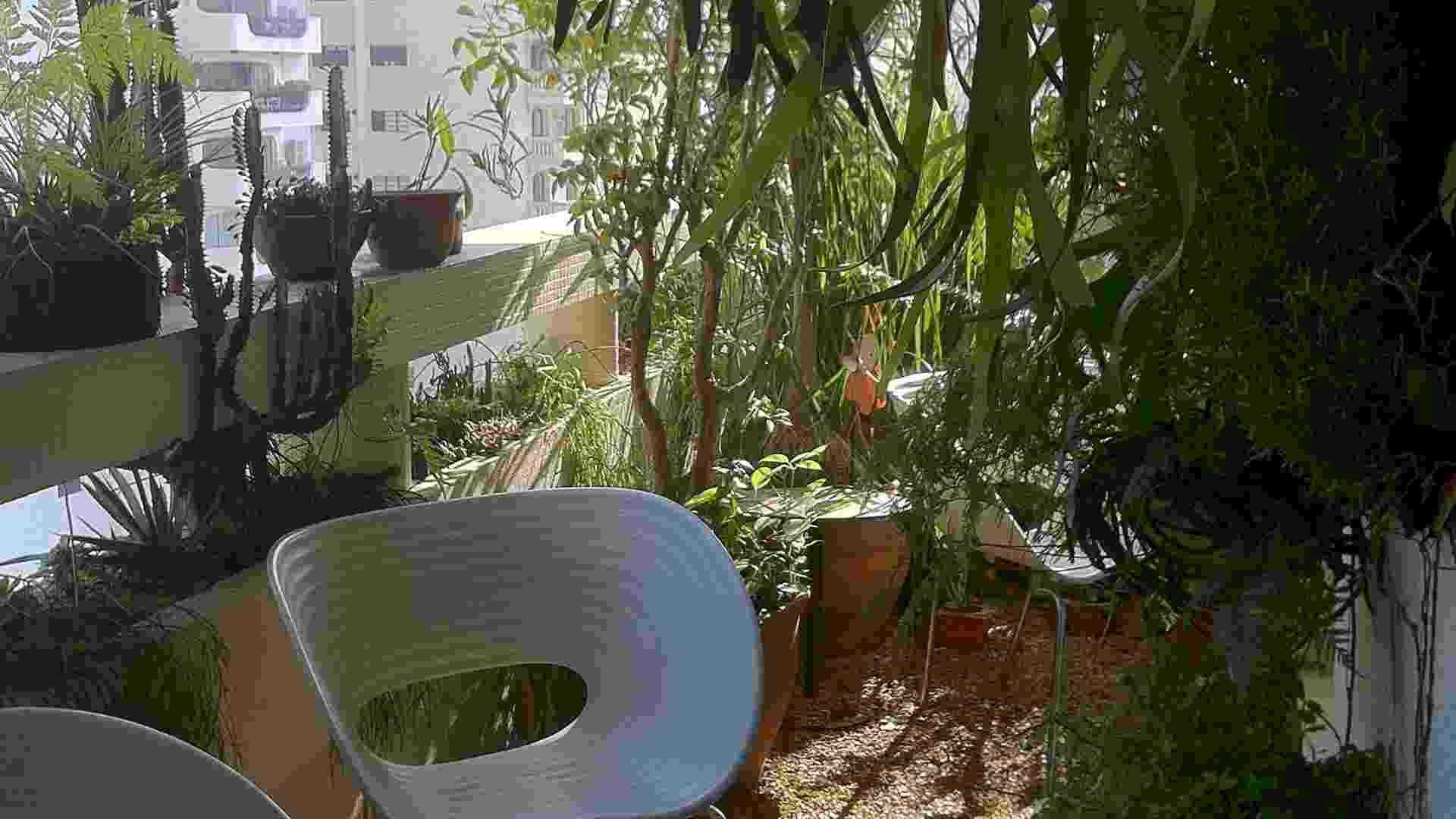 Ao idealizar este jardim na varanda com 13 m², o arquiteto Gustavo Calazans pensou em propiciar um respiro ao apartamento e uma melhora na qualidade da temperatura ambiente interna, tornando-a mais fresca. Atendendo a estas necessidades, o paisagista Rodrigo Oliveira usou muitas plantas, de pequeno e médio portes, dando uma cara de quintal ao local - Divulgação