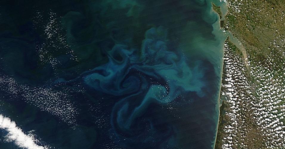 30.abr.2013 - Embora exista durante todo o ano na Baía de Biscaia, na costa da França, o crescimento do fitoplâncton ocorre apenas na primavera. A intensidade da luz do Sol, o aumento da carga de nutrientes trazidas pelas correntes marítimas e o aquecimento da água estimulam a explosão dessas rodas gigantes de micro-organismos, que podem ser vistas facilmente do espaço, como mostra esse registro do satélite Aqua, da Nasa (Agência Espacial Norte-Americana), feito em 20 de abril de 2013
