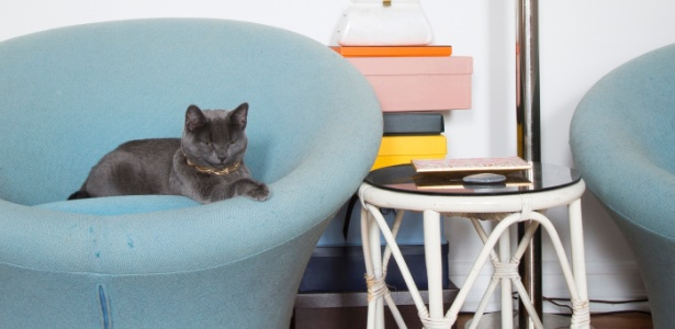 No quarto do apê em Nova York, o gato Lou em uma das cadeiras Mushroom desenhadas por Pierre Paulin  - James Ransom/The New York Times