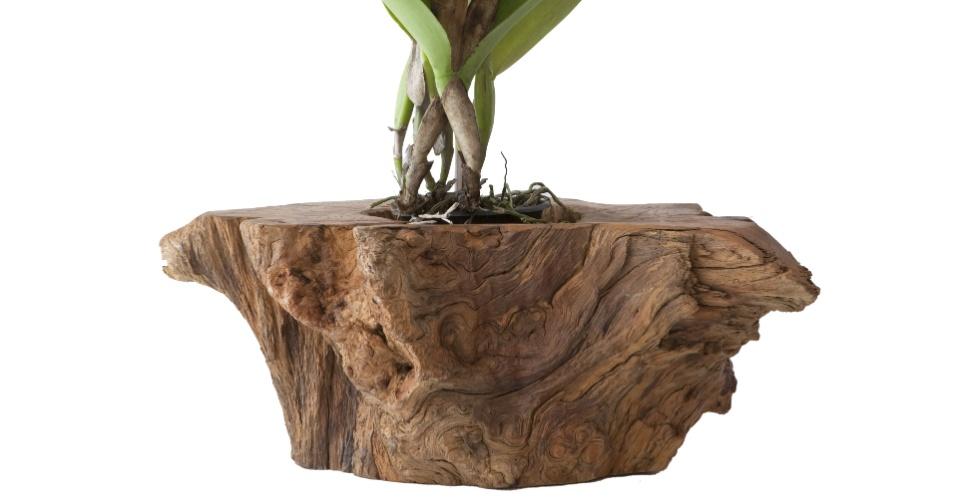 Desenhado por Monica Cintra (www.monicacintra.com.br), o cachepô é feito de resíduos de madeira e seu preço sugerido é de R$ 480 I Preços pesquisados em abril de 2013 e sujeitos a alterações