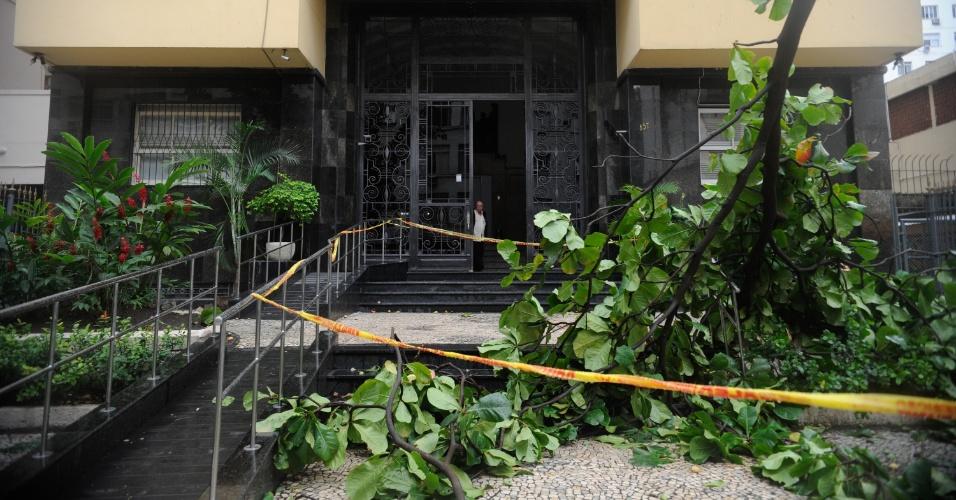 6.mai.2013 - Árvore cai em prédio na rua Marquês de Abrantes, no Flamengo (RJ), após forte ventania. Os ventos de até 93 km/h que atingiram a cidade deixaram vários bairros sem luz, ruas obstruídas com a queda de árvores e o trânsito bastante congestionado nas principais vias