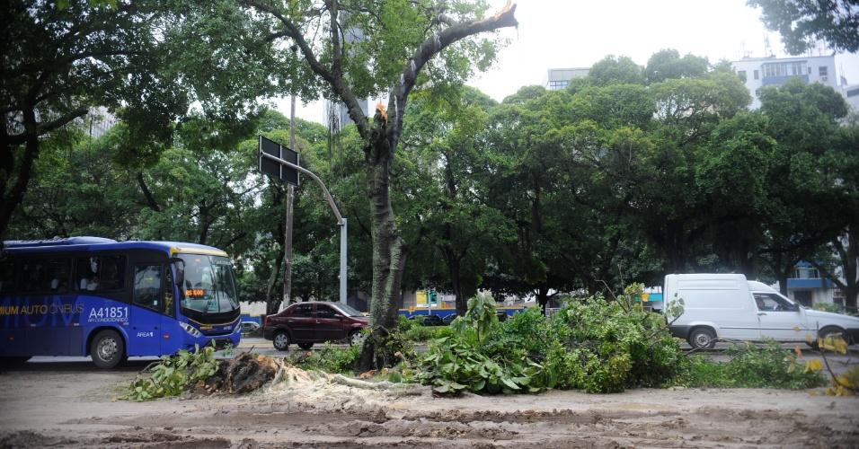 6.mai.2013 - Lama e galhos de árvore obstruem parte do calçadão da Praia do Flamengo, no Rio de Janeiro, após forte ventania
