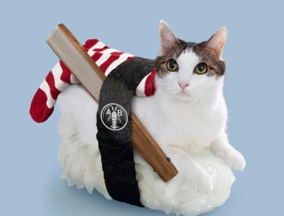 8.mai.2013 - Neko-sushi, ou sushi cats, ou gatos-sushi receita da empresa japonesa Tange & Nakimushi Peanuts. Aos animófilos mais afoitos, CALMA: a brincadeira só é vendida em forma de quadro e aplicativos de celular