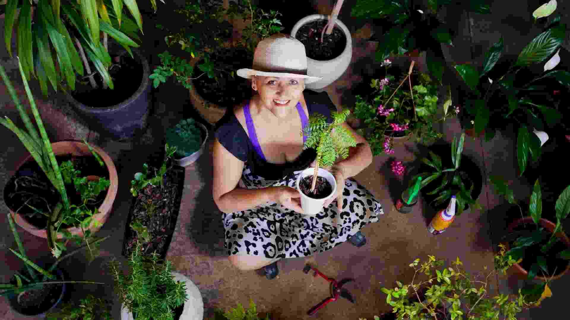Floricultura British Garden, em Belo Horizonte (MG), da empresária Arlete Dutra, tem hotel e hospital para plantas - Bruno Magalhães/UOL