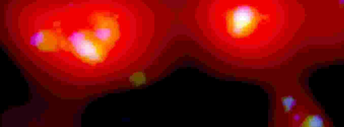 9.mai.2013 - Astrônomos da Universidade West Virginia, nos Estados Unidos, detectaram pela primeira vez nuvens de hidrogênio entre as galáxias Andrômeda e Triângulo, que são vizinhas da nossa Via Láctea. O elemento que nunca tinha sido encontrado tão próximo da Terra indica que a região tem potencial para formar mais estrelas. As cores acima indicam as diferentes resoluções do telescópio Green Bank - o vermelho combina dados originais da detecção das nuvens - Bill Saxton/NRAO