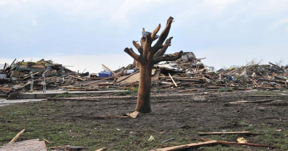 21.mai.2013 - Apenas um tronco de árvore sobrevive ao tornado que devastou uma parte do bairro Westmoor, próximo a Moore, nos Estados Unidos. O desastre natural deixou dezenas de mortos na região