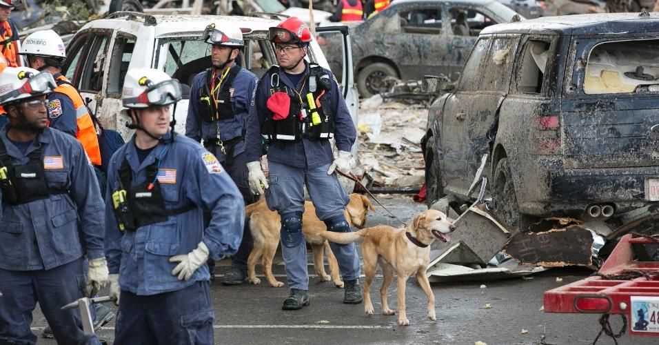 21.mai.2013 - Equipes de resgate usam cachorro para auxliar nas buscas por sobreviventes entre os escombros do Moore Medical Center, em Moore (EUA), após a passagem de um tornado que deixou dezenas de mortos na região