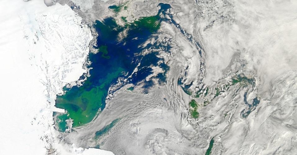 21.mai.2013 - Fitoplânctos são micro-organismos vegetais responsáveis pela captação do CO2 e liberação de oxigênio na superfície do oceano - assim como ocorre com as árvores e plantas terrestres -, contribuindo para controlar a temperatura do planeta. Mesmo sendo organismos microscópicos, o fitoplâncton pode ser visto do espaço quando floresce (manchas verdes), como mostra registro no mar de Ross, na Antártida, feito por satélite da Nasa (Agência Espacial Norte-Americana)