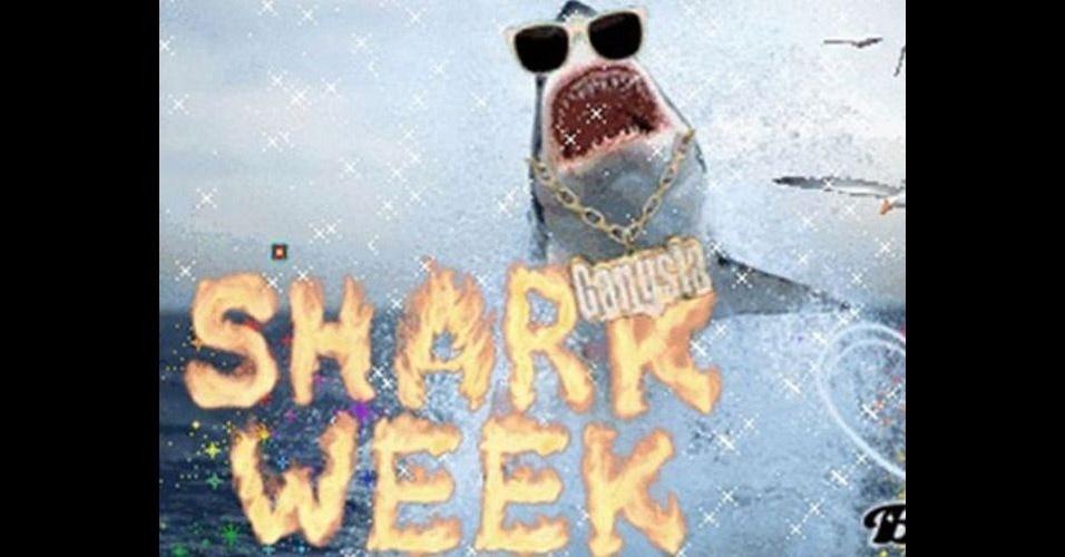 Na imagem, o site Armenatoyan realizou até a 'semana do tubarão' e postou diversas fotos do bicho. A modinha da web Shark Attack - Ataque de Tubarão - consiste em brincar com imagens de tubarões, fazendo montagens e colocando o bichano em diferentes cenários e posições