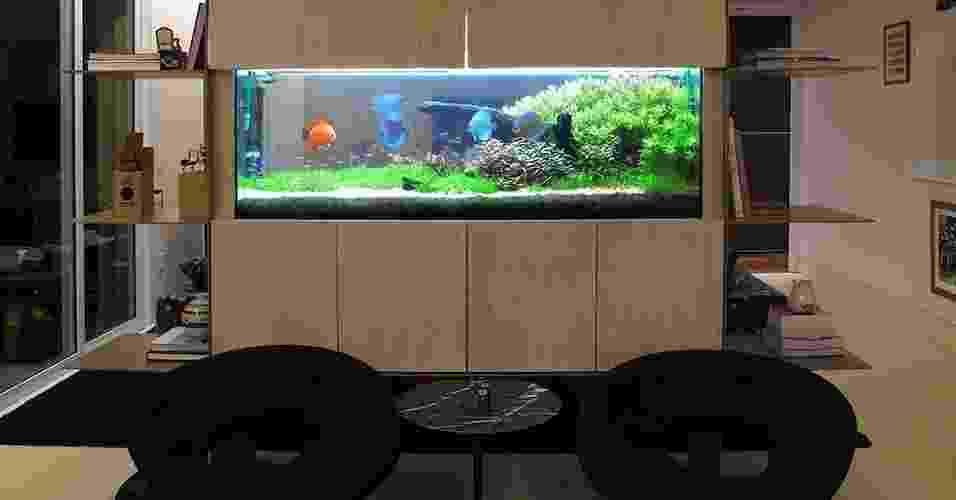 Projetos de aquário - Divulgação