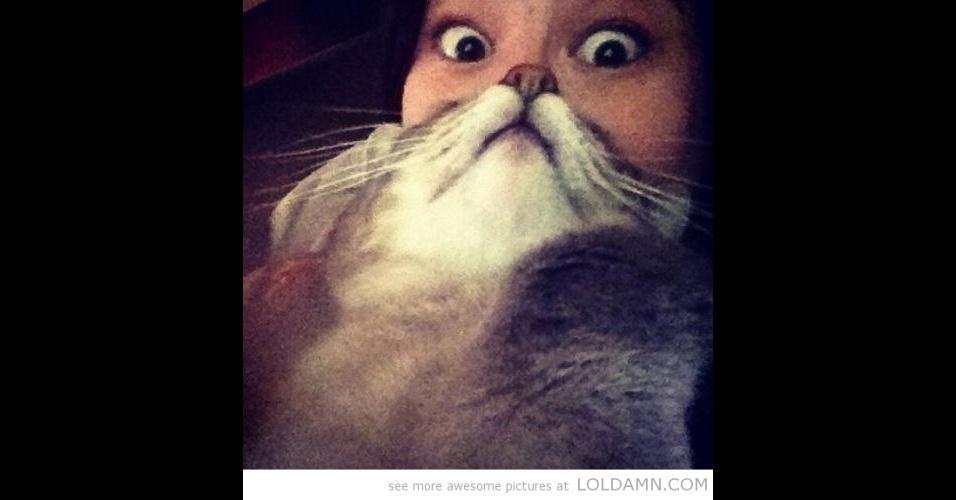 Modinha na internet propõe que usuários usem seus gatinhos como se fossem barbas, posicionando o bichano no rosto