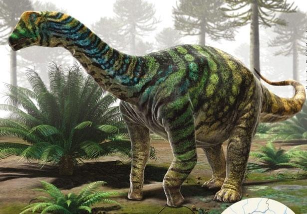 Brasil ganha nova espécie de dinossauro pescoçudo caipira