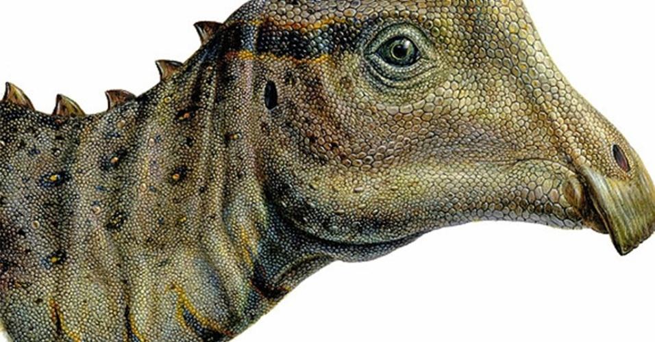 Concepção artística do dinossauro apelidado de Joe; fóssil foi achado em Utah, nos EUA, por estudante do ensino médio