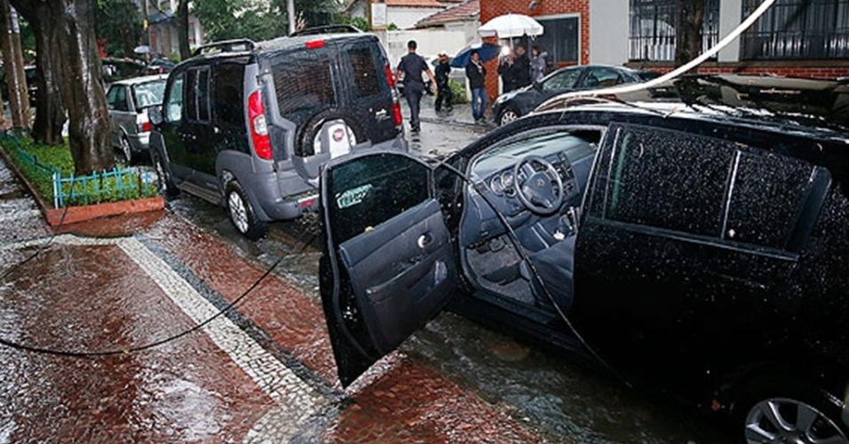 Motorista morre eletrocutado após árvore cair e atingir rede elétrica na região de Santa Cecília
