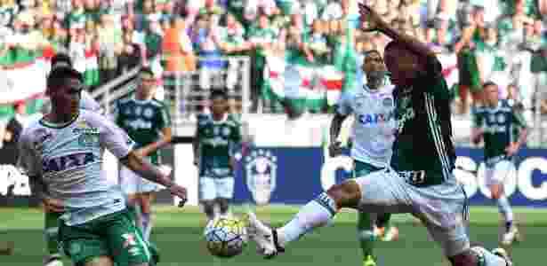 Palmeiras x Chapecoense, Brasileiro 2016 - Nelson Almeida/AFP - Nelson Almeida/AFP