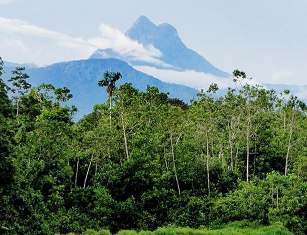 Pico da Neblina, no Amazonas