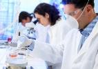 Novo vírus provoca primeiro caso de febre hemorrágica brasileira em 20 anos - Shutterstock