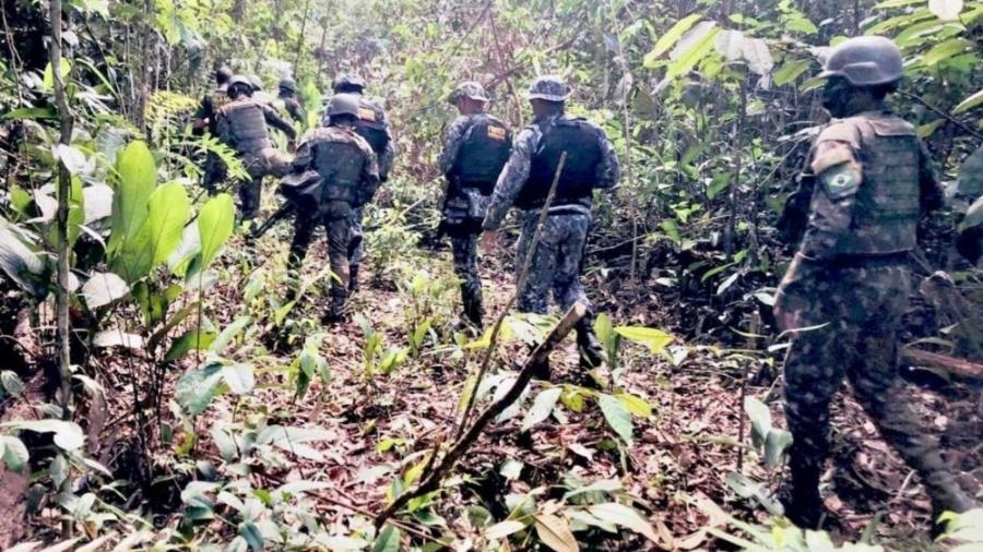 Forças Armadas em ação conjunta com o Ibama na Amazônia - Arquivo Pessoal