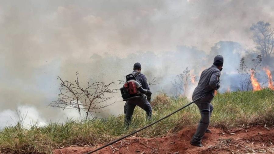 Bombeiros apagam incêndio em reserva de Mata Atlântica em Bauru, em São Paulo - Reprodução / Corpo de Bombeiros