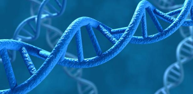 GENES615
