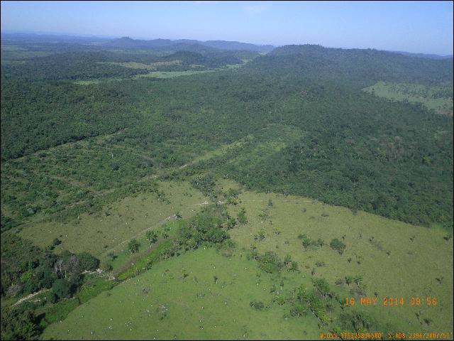 Desmatamento em Novo Progresso, no Pará, estado campeão em derrubadas segundo a ONG Imazon. Foto registrada por checagem de campo do INPE em 16 de maio