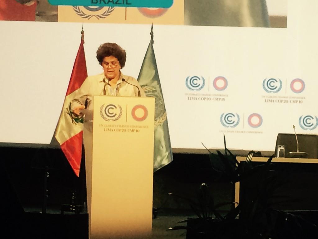 Ministra do Meio Ambiente, Isabella Teixeira, fala na plenária da 20a Conferência da ONU sobre Mudanças Climáticas: redução do desmatamento nos últimos anos foi destaque do discurso.