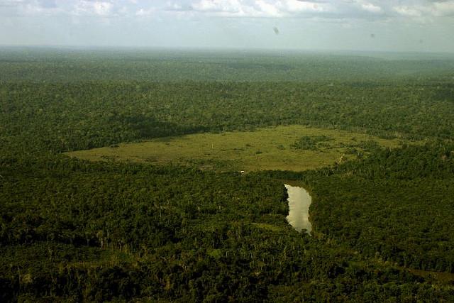 Área da Amazônia paraense desmatada para gado. Foto: Leonardo F. Freitas/Flickr (Licença CC BY-NC-SA 2.0)