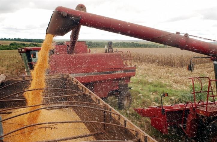 Impacto ambiental da soja exportada à União Europeia é proporcionalmente maior que a da China