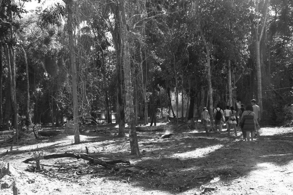 Trilha na área dos indígenas Akrãtikatêjê na TI Mãe Maria
