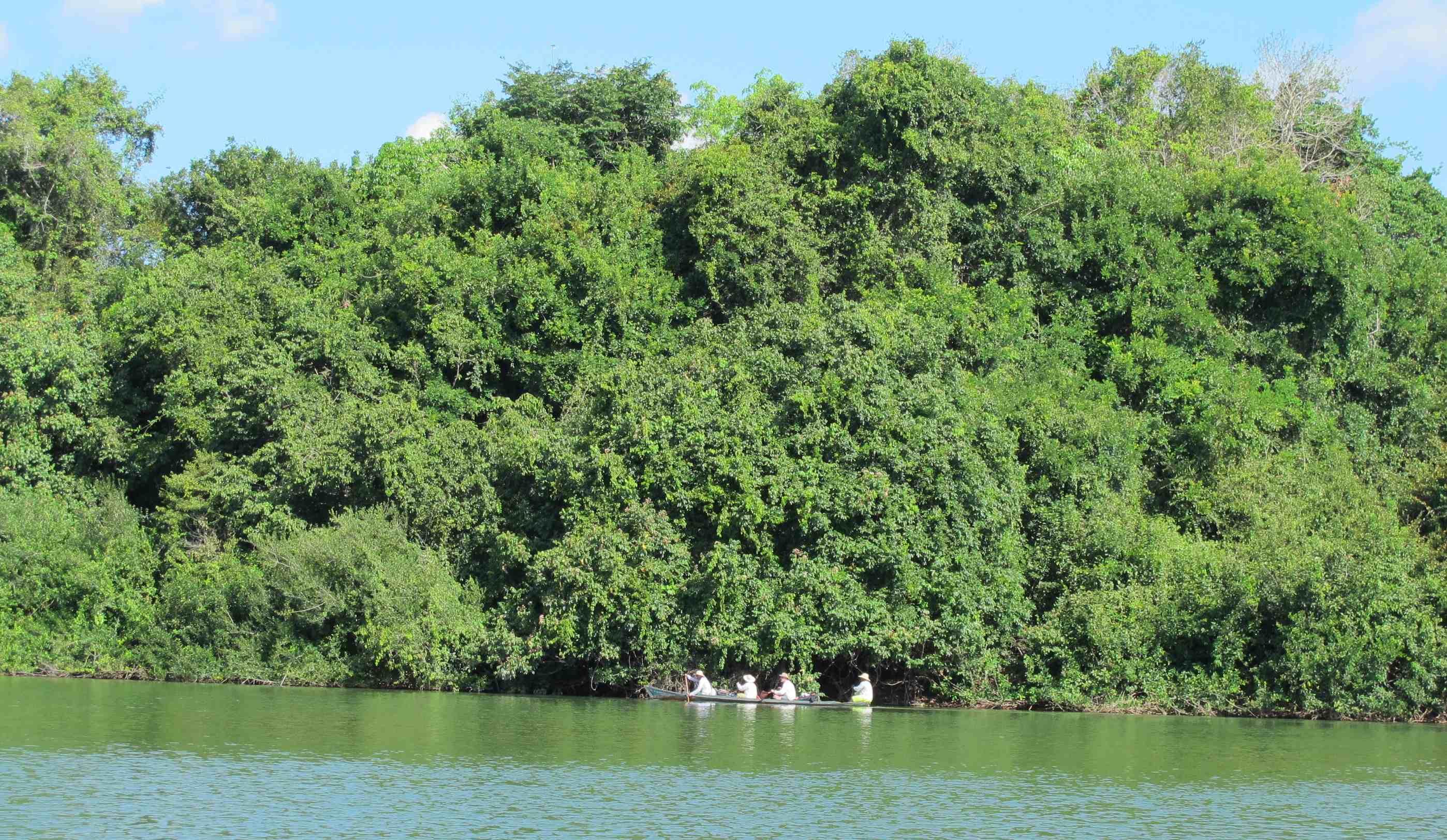 Canoada ByeBye Xingu: descemos 110km o rio para ver o impacto de Belo Monte
