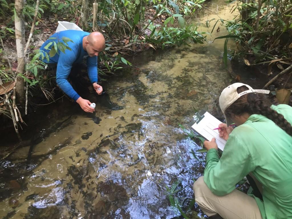 Pesquisadores retiram amostra de córrego no Mato Grosso para análise de níveis de fertilizantes. Foto: Karinna Matozinhos/Ipam