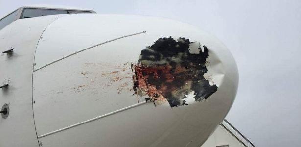 Um avião da companhia egípcia EgyptAir ficou danificado ao se chocar com um pássaro durante uma aterrissagem no aeroporto de Heathrow, na Inglaterra. Créditos: Amir Hashim/Facebook