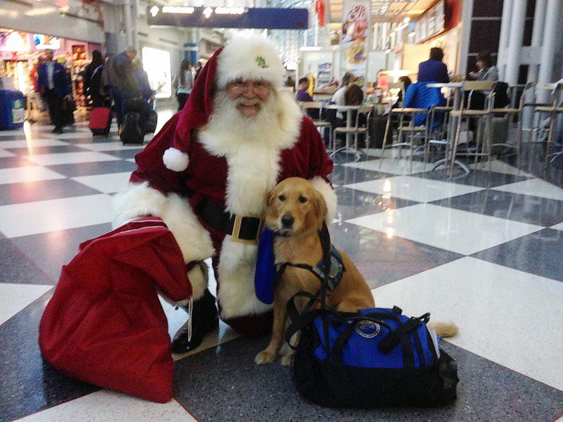 Nem Papai Noel resistiu e tirou uma foto com os cachorros no aeroporto