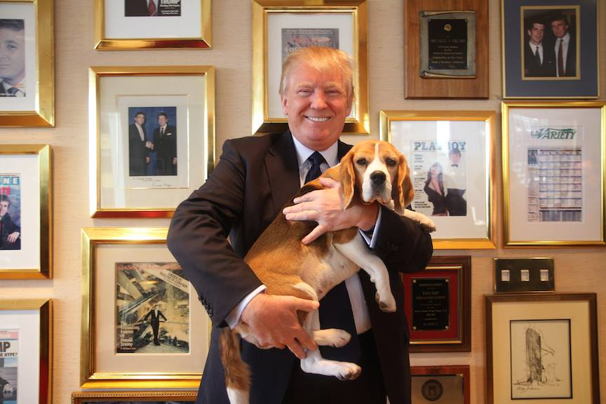 Miss P visits Donald Trump in another annual tradition for the Westminster winner