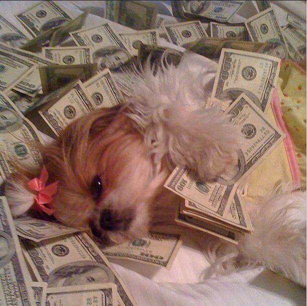 rich4