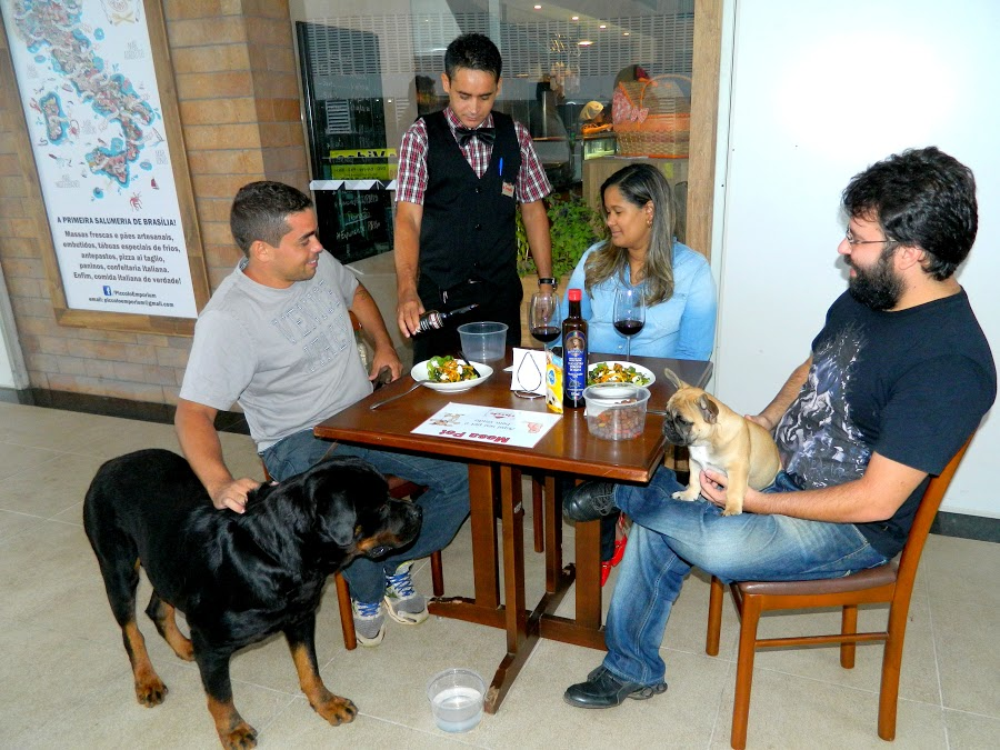 Gustavo, com o rotweiller Ornion; o casal Felipe e Mariana, com o buldogue francês Chiva