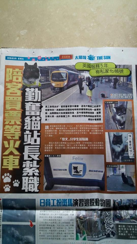 Felix the Huddersfield Station cat hits the headlines in Hong Kong's The Sun newspaper