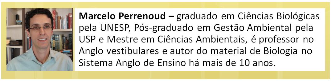 marcelo_perrenoud