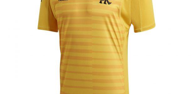 323a5f202e Flamengo estreia camisa amarela de goleiros em jogo neste fim de semana -  UOL Esporte