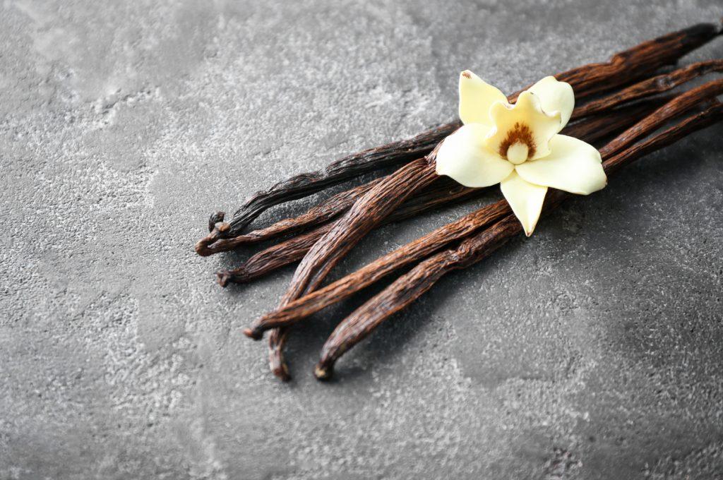 Baunilha verdadeira é fonte de antioxidantes, faça seu extrato ...